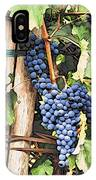 Grapes 1 IPhone Case