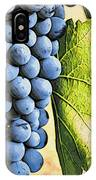 Grapes 2 IPhone Case