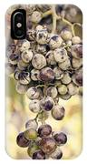 Grapes On The Vine IPhone Case
