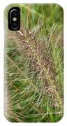 Grasses At Spaulding Pond IPhone Case