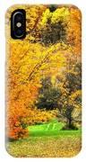 Grassy Autumn Road IPhone Case