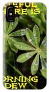 Grateful Dew IPhone Case