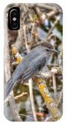 Gray Catbird IPhone Case