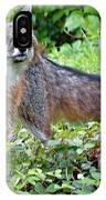 Gray Fox IPhone Case