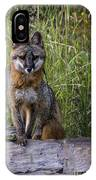 Gray Fox Posing IPhone Case