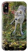Gray Wolf Drinking IPhone Case