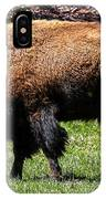 Grazing In The Grass IPhone Case