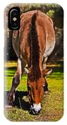 Grazing With An Attitude IPhone Case