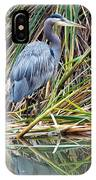 Great Blue Heron 9 IPhone Case
