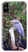 Great Blue Heron Resting IPhone Case