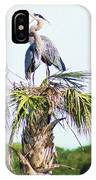 Great Blue Heron Three IPhone Case
