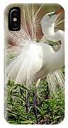 Great Egret Courtship Display IPhone Case