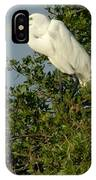 Great Egret In A Tree IPhone Case