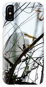 Great Egret Roosting In Winter IPhone Case