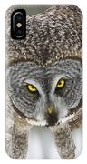 Great Gray Owl Pictures 648 IPhone Case