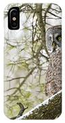 Great Gray Owl Pictures 804 IPhone Case