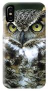 Great Horned Owl At Rest IPhone Case