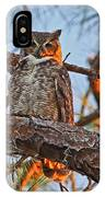 Great Horned Owl At Sunset IPhone Case