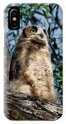 Great Horned Owl Family IPhone Case