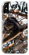 Great Horned Owl Looking Down  IPhone Case