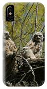 Great Horned Owlets 1 IPhone Case