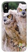 Great Horned Owlets IPhone Case