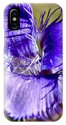 Greater Fringed Gentian IPhone Case