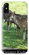 Greater Kudu IPhone Case