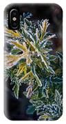 Green And Yellow Frost IPhone Case