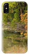Green Ash In Autumn Foliage IPhone X Case