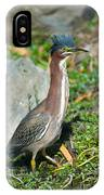 Green-backed Heron Butorides Virescens IPhone Case