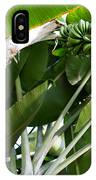 Green Bananas On A Tree IPhone Case