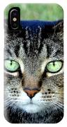 Green Cat Eyes In Summer Grass IPhone Case