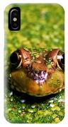 Green Frog Hiding IPhone Case