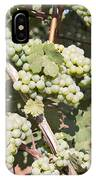 Green Grapes Growing On Grapevines IPhone Case