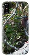 Green Heron 1 IPhone Case