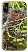 Green Heron And Catch IPhone Case