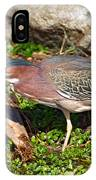 Green Heron IPhone Case