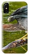 Green Heron Pictures 522 IPhone Case