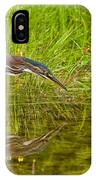 Green Heron Pictures 534 IPhone Case