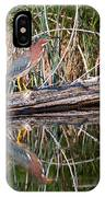 Green Heron Reflections Squared IPhone Case