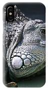 Green Iguana 1 IPhone Case