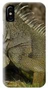 Green Iguana Guayaquil Ecuador IPhone Case