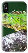 Green Iguana Iguana Iguana, Tarcoles IPhone Case