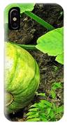 Green Pumpkin IPhone Case