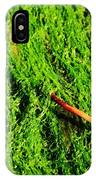 Green - Seaside Abstract IPhone Case