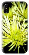 Green Spider Mums IPhone Case