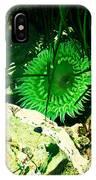 Green Urchin IPhone Case