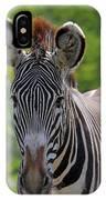 Grevy Zebra IPhone Case