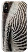 Grevy's Zebra 5 IPhone Case